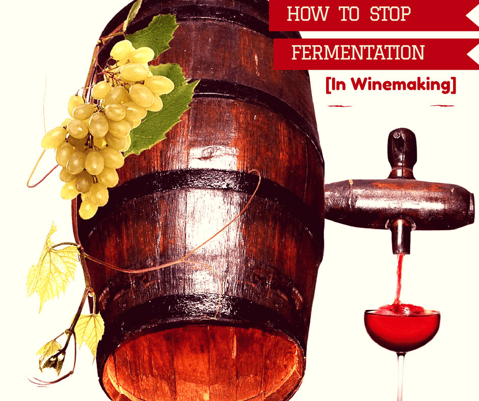 How To Stop Fermentation