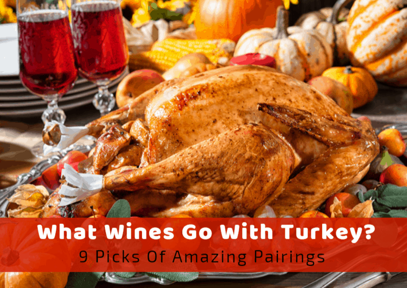 What Wines Go With Turkey? 9 Picks of Amazing Pairings
