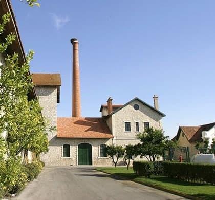 DFJ-Vinhos-Winery