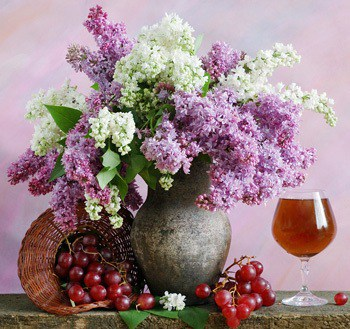 lilac and wine